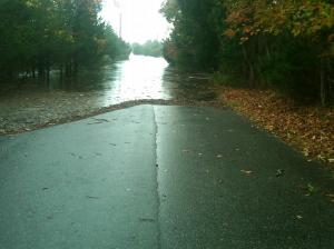 Maidstone Park Rd flooded