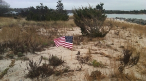 Flag on our Beach